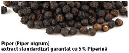 piper negru cucumin95