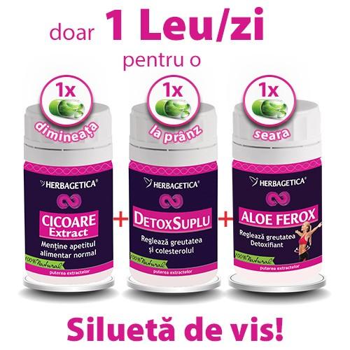 Extract de Cicoare + Detox Suplu + Aloe Ferox, Herbagetica