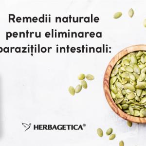 Tratamente naturiste paraziți intestinali – alternative nemedicamentoase eficiente