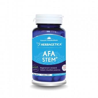 AFA STEM