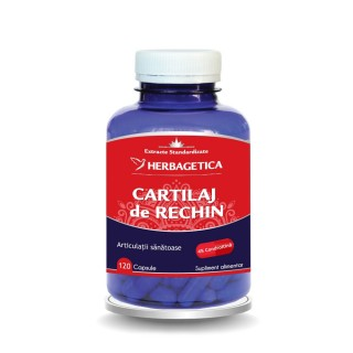 CARTILAJ de RECHIN