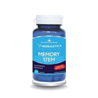 MEMORY STEM