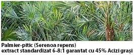palmier pitic curcumin95